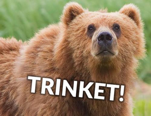 32 Things That Remind Us of Trinket Because Bears